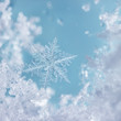 Crystal Blue Snowflake by day