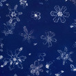 Real Snowflakes Isolated on Glass Plate