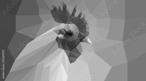 black and white polygonal cock head - 126691915
