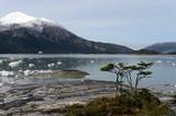 Pia glacier on the archipelago of Tierra del Fuego.
