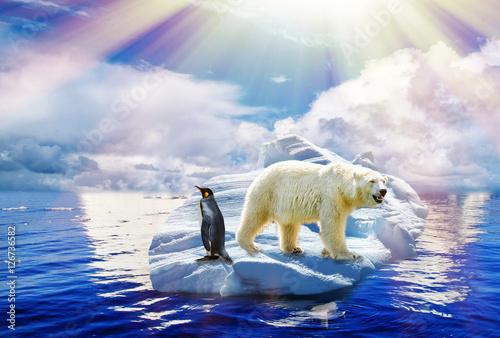 In de dag Antarctica Klimawandel - Global warming