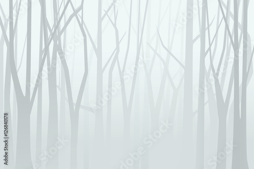 Foggy forest. Vector illustration - 126840178