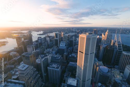 Sydney city skyline Poster