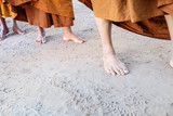 Foot of Monk