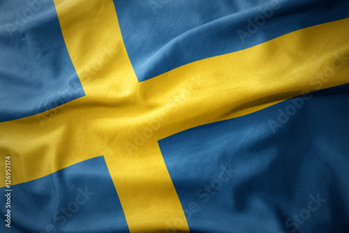 Staande foto Stockholm waving colorful flag of sweden.