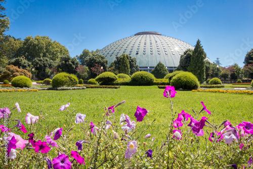 Foto Spatwand UFO Palácio de Cristal à Porto palacio