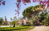 Palermo Botanical Gardens (Orto Botanico), Palermo, Sicily, Italy