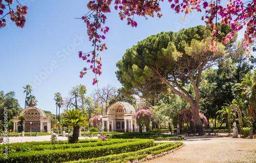 Poster Palermo Botanical Gardens (Orto Botanico), Palermo, Sicily, Italy