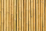 Natural bamboo fence for background