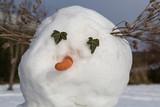 Snögubbe med mortsnäsa och ögon av murgröna
