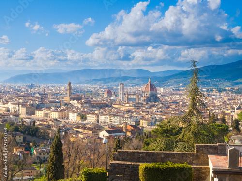 Poster Florencia desde el alto
