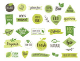 Fototapety Bio, Ecology, Organic logos and icons, labels, tags. Hand drawn bio healthy food badges, set of raw, vegan, healthy food signs, organic and elements set