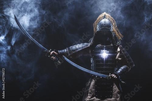 Samurai warrior Poster