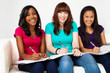 Multicultural group of teenage girls reading and studying. Student.