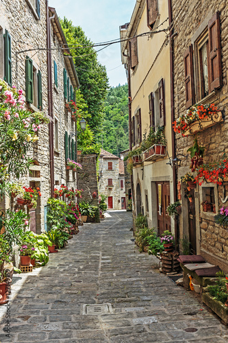 Obraz w ramie Narrow old street with flowers in Italy