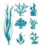 Underwater sea corals and algae vector silhouettes isolated on white