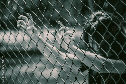 prison women in the cage hand at fence prison in jail, no freedom struggle concept Poster