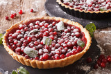 Freshly baked cranberry tart with powdered sugar and mint close-up. horizontal