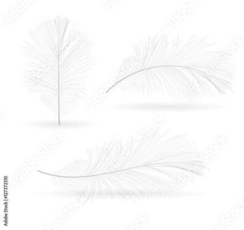Ptasia ręka rysujący piórko wektoru ilustracja