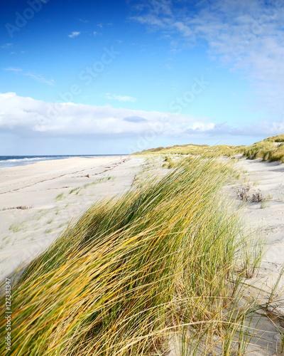 Deurstickers Noordzee Küstenlandschaft Nordfriesische Inseln