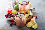 Moscow mule cocktail with ginger and cranberry