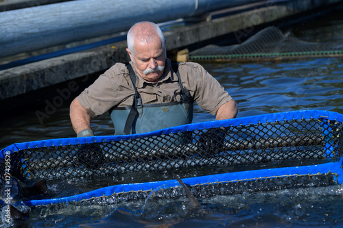 Poster fish-farmer working with a net
