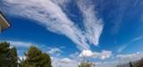 Uccello con la testa tra le nuvole