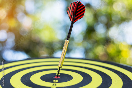Target dart with arrow background ,metaphor to target marketing or target arrow concept Plakát
