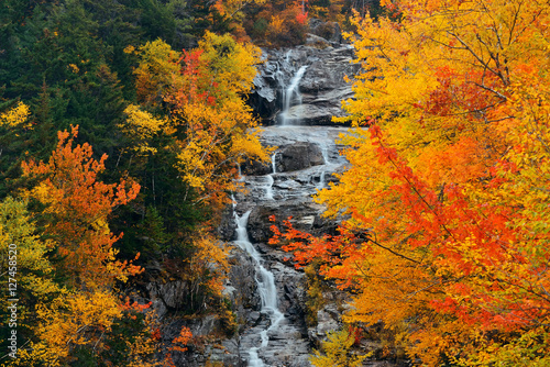 Colorful Autumn creek Poster