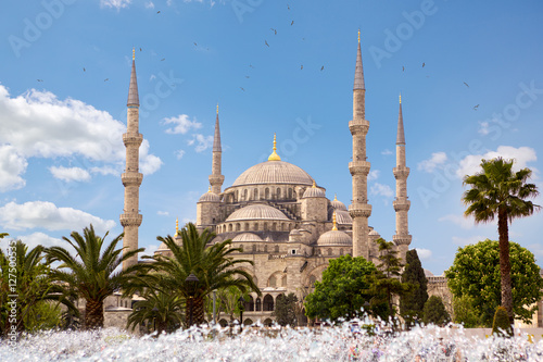 Blue Mosque Sultanahmet Camii in Istanbul, Turkey Poster