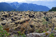 Lichen covered rocks and mountains in Nisga'a Memorial Lava Bed, British Columbia, Canada