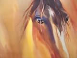 foal in the meadow - 127611954