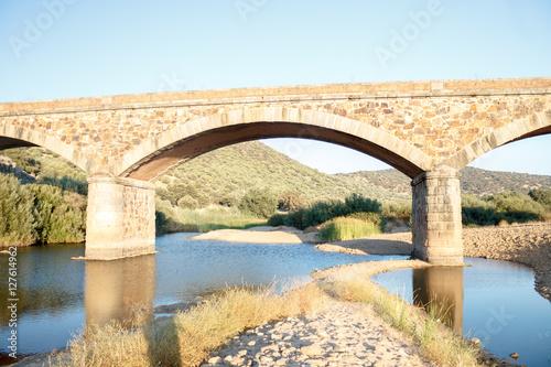 Poster Puente sobre rio