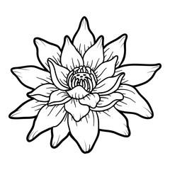 Coloring book, flower Lotus