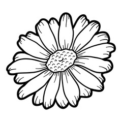 Coloring book, flower Chamomile