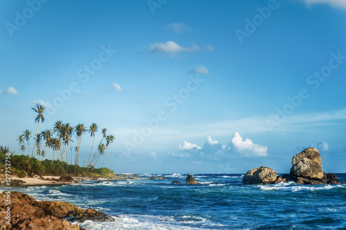 beautiful exotic ocean beach with palms, rocks and blue cloudy sky
