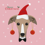 Christmas greeting card. Greyhound dog with red Santa