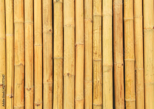 Fotobehang Bamboe Background and texture with Natural bamboo wall