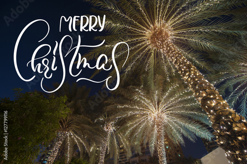 Aluminium Palm boom background palm tree with text Merry Christmas. Calligraphy and lettering