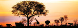 Afrykańska Safari Silhouette Banner