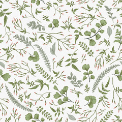 Seamless floral pattern. Leaves and herbs.