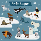 Arctic Animal cartoon. Penguin, Polar Bear, Reindeer. Walrus. Moose. Snowy Owl. Arctic Fox. Eagle. Killer whale. Bison. Seal. Puffin. Narwhal. Vector illustration.