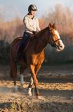 Young girl riding a horse - 127901140