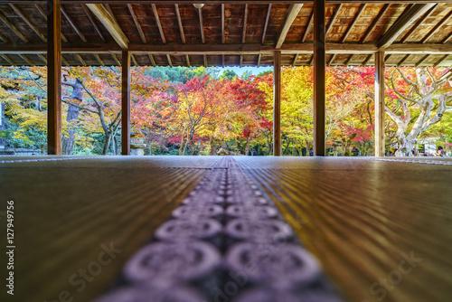 Papiers peints Kyoto 京都 圓光寺の紅葉 その2