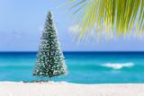 Fototapety Christmas fir tree on sandy beach