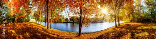Papiers peints Photos panoramiques Landschaft im Herbst, sonniges Panorama am Waldrand mit Blick auf einem Fluss