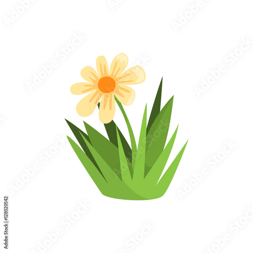 Chamomile Flower Isolated Element Of Forest Landscape Design For The Flash Game Landscaping Purposes