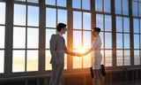 Business partners handshake . Mixed media