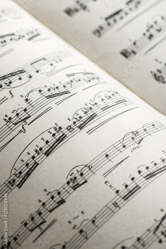Music notation book. Page with music notes