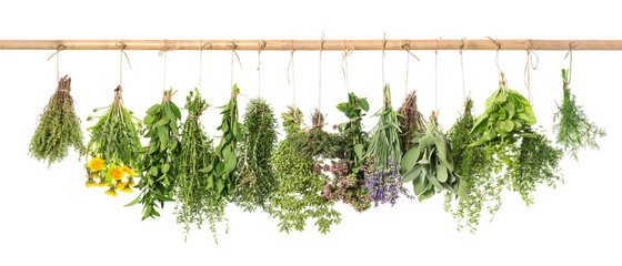 Fresh herbs hanging Basil rosemary thyme mint dill sage © LiliGraphie